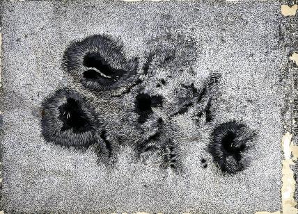 'Solar Spot', c 1850.