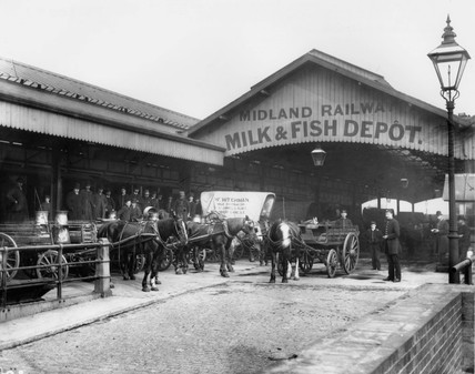 Midland Railway's Milk & Fish Depot, Sommerstown, London, c 1894.