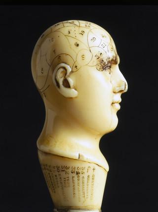Ivory phrenological head, 1850-1914.
