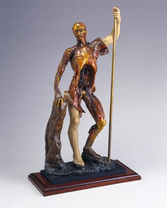 Wax male anatomical figure, Italy, 1740-1780.