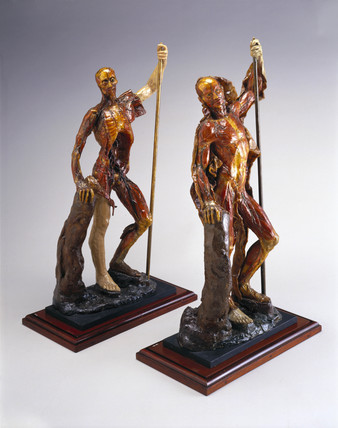 Two wax male anatomical figures, Italy, 1740-1780.