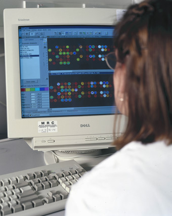 A scientist analysing DNA microarrays.