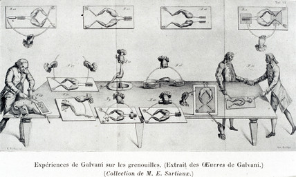 Galvani experiment on frogs' legs, late 18th century.