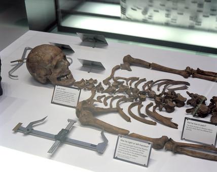 'Ancient DNA' showcase, Science Museum, London, April 2000.