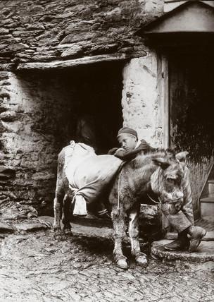 'Boy and donkey', c 1890s.