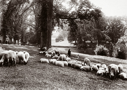 'The Monk's Walk at Chenies', 1889.