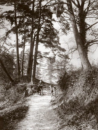 Two boys by a gate on a country path, c 1890s.