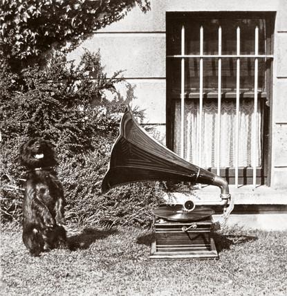 Gramophone and dog, 1890-1910.