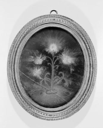 Lichtenberg figure, 18th century. Electrost
