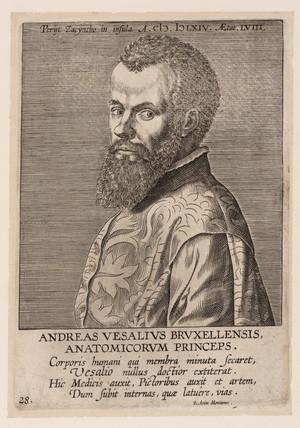 Andreas Vesalius, Belgian anatomist, c 1560.