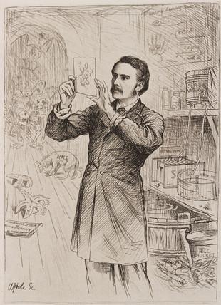 James Cosar Ewart, zoologist, 1884.