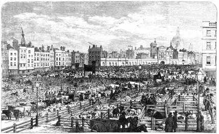 Smithfield Market, London 1855.