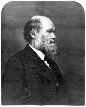 Charles Darwin, English naturalist, 1871.