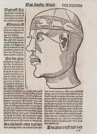 Phrenological head, 1512.