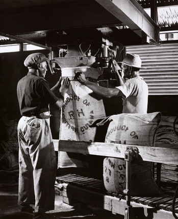 Two workers fill sugar bags at Bookers, Georgetown, Guyana, 1958.