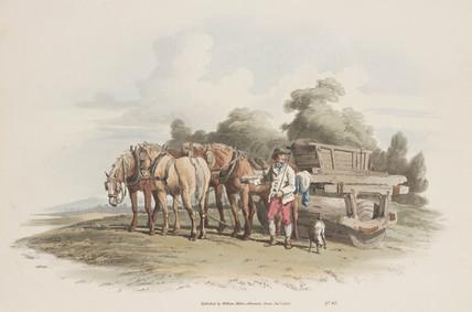 'The Gras Roller', 1808.