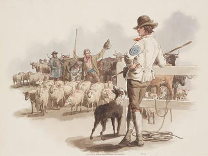 'Smithfield Drover', 1808.