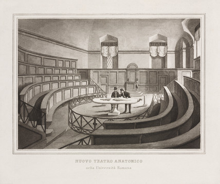 New anatomical theatre, University of Rome, Italy, 1785-1805.