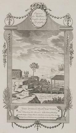 'The Indigo Manufactory', 1777.