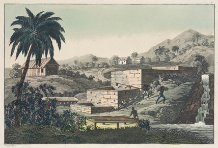 'Making indigo', 19th century.