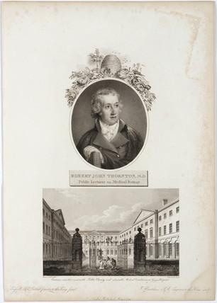 Robert John Thornton, British botanical and medical writer, 1799.