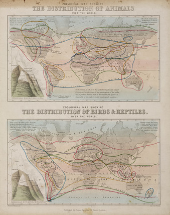 Zoological maps of the world, c 1850.