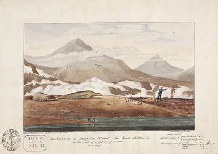 'Sea-Leopards at Deception Island, New South Shetland', 7 January, 1828.