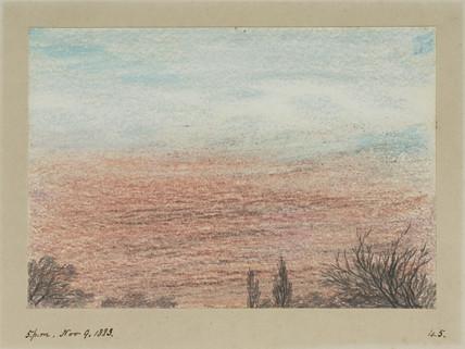 Sky and treetops, 17.00, 9 November 1883.