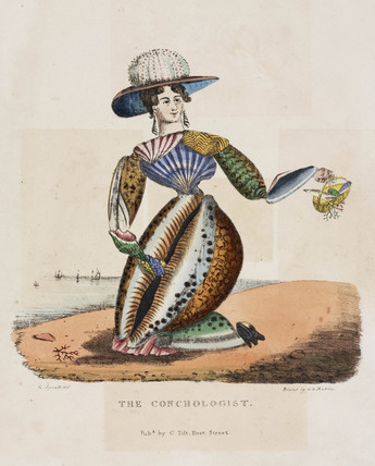 'The Conchologist', c 1831.