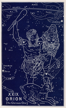 The constellation of Orion (the Glorious One), 1895.