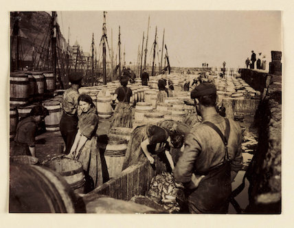 Barrels of herring, Whitby Harbour, North Yorkshire, c 1905.