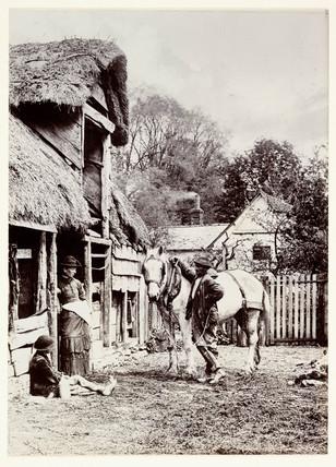 Barnyard, c 1890.