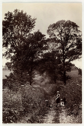Children in a country lane, c 1890.
