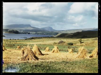 Harvest landscape, c 1943