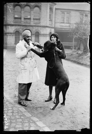 Large dog greets a vet outside the Royal Veterinary College, London, 1932.