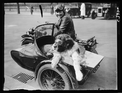 Arriving in style for a dog show, 1934.