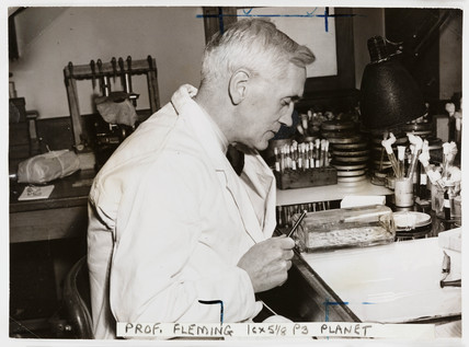 Profesor Alexander Fleming, 'Discoverer of Penicillin', 1943.
