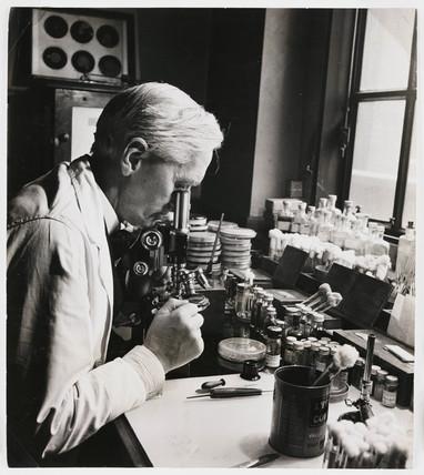 Alexander Fleming, Scottish bacteriologist, 18 December 1943.