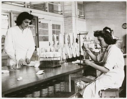 'Girls Preparing Nutrient Media for Bacteriological Test', 1946.