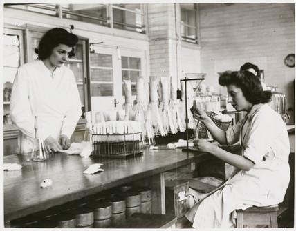 'Girls Preparing Nutrient Media for Bacteriological Test', 1946.