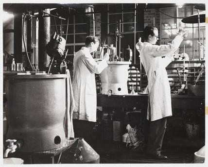 Refining penicillin, 1943.