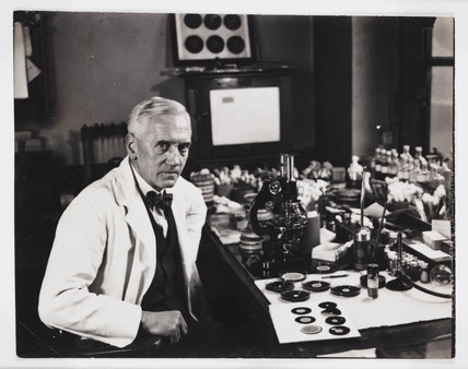 Profesor Fleming, Scottish bacteriologist, in his laboratory, 1943.