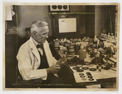 Profesor Fleming working in his laboratory, 1943.