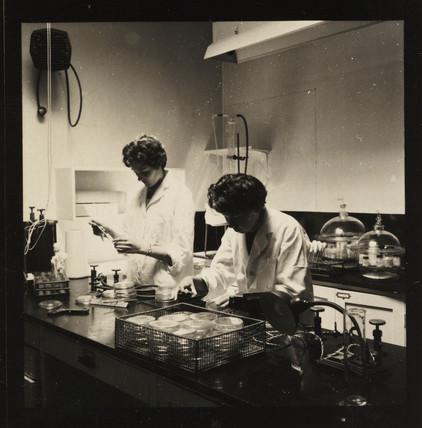 Manufacturing Penbritin, 1961.