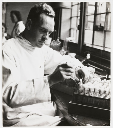 Testing penicillin solutions in a laboratory, 1943.