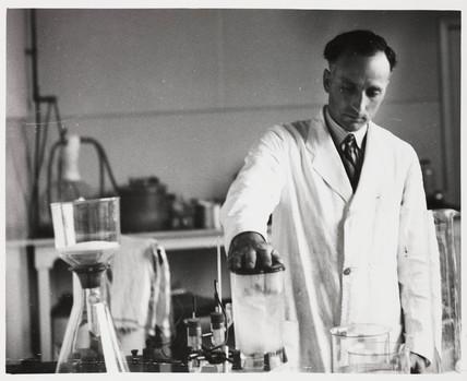Pharmacist mincing drugs, 1950.