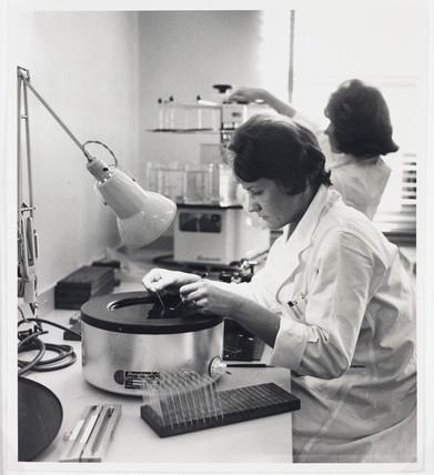 'Drug Testing at Pfizer, Kent', 1962.