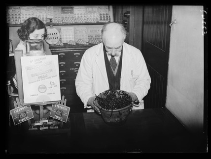Pharmacist holding a bowl of leeches, 23 January 1935.