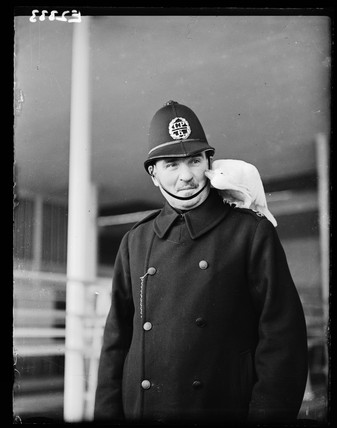 Policeman with cockatoo, 1935.