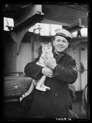 Sailor with ship's cat, 15 February 1940.
